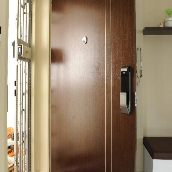 Veneer Solid HDB Main Door Single Leaf 3×7 Feet
