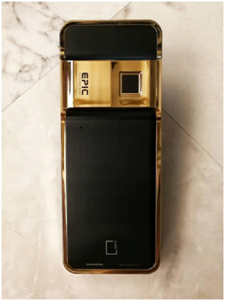 EPIC 24K Gold Platted Gate Digital Lock